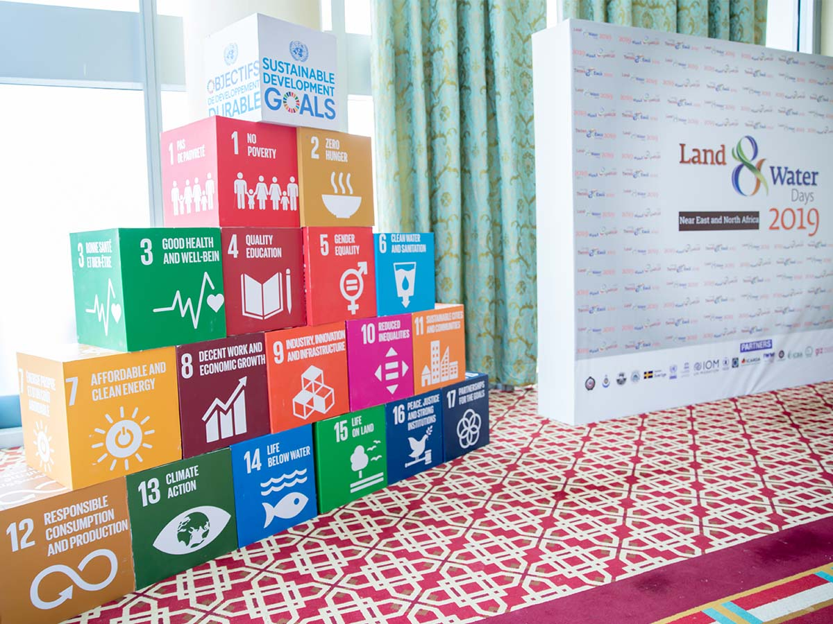 Branded Cubes SDGs - Land and Water Days 2019 Event by Paradigm Ltd.